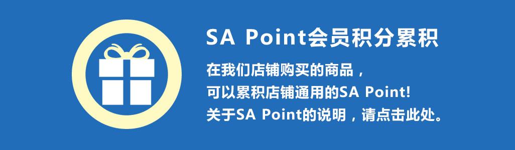 SA Point